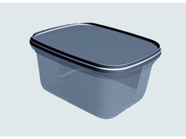 boite / bac en plastique injecté pour vos glaces,plats préparés