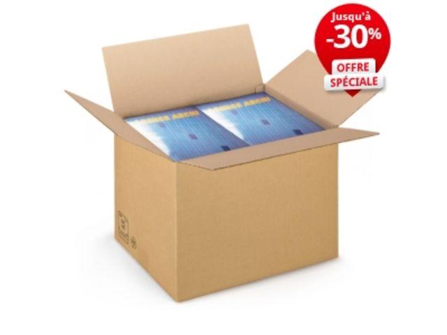 caisse carton brune simple cannelure rajabox longueur 40 49 cm contact raja. Black Bedroom Furniture Sets. Home Design Ideas