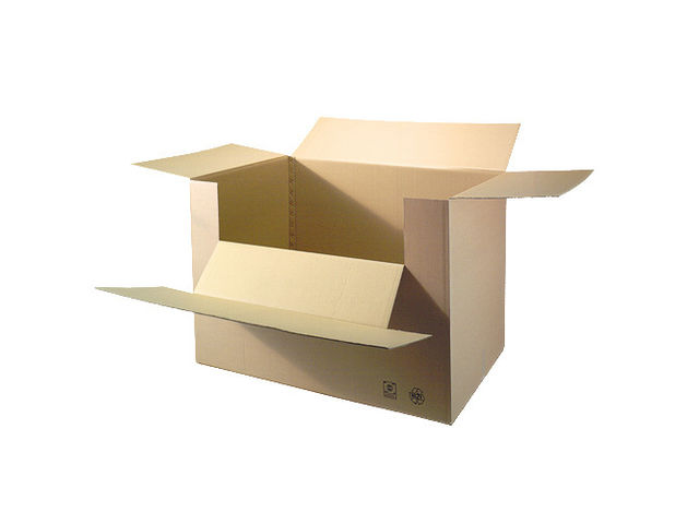 Container Carton_Packdiscount