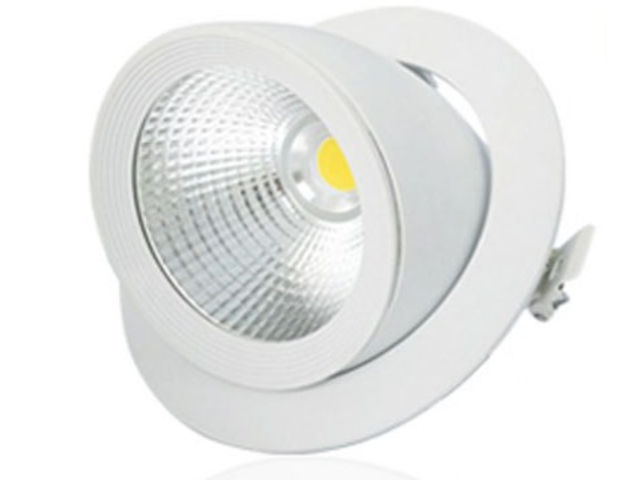 Escargot 30W LED Orientable
