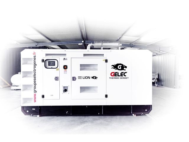 Groupe lectrog ne diesel lion 250yc contact gelec for Groupe electrogene diesel demarrage automatique