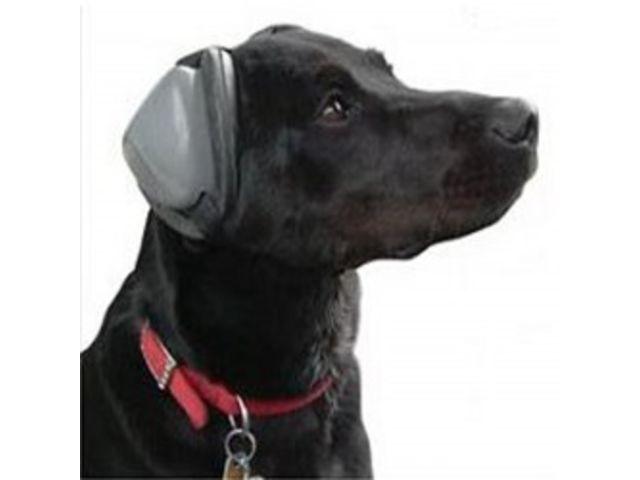 achat pcp et transport - Page 2 Protection-casque-anti-bruit-pour-chien-001048055-product_zoom