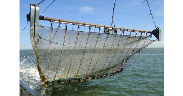 Un nouveau rapport à charge contre la pêche électrique
