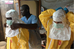 Ebola : un test de diagnostic rapide mis au point par le CEA