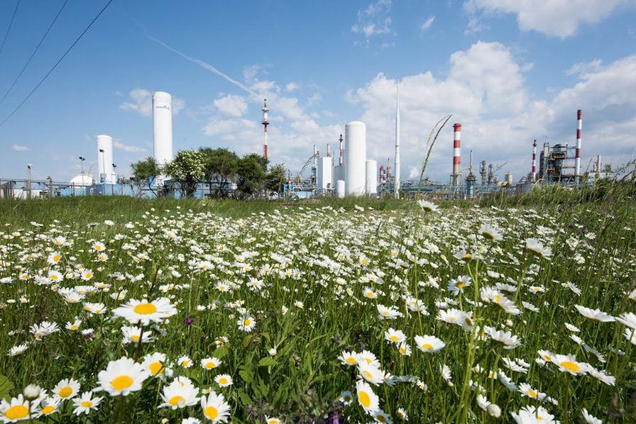 Cession de Polyamides à BASF — Solvay