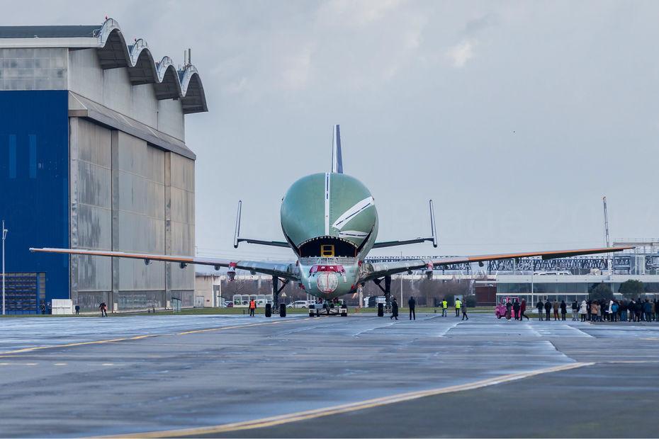L'avion-cargo Beluga XL d'Airbus de face sur le tarmac à la sortie de son hangar à Toulouse