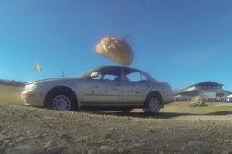 Nissan Maxima vs citrouille