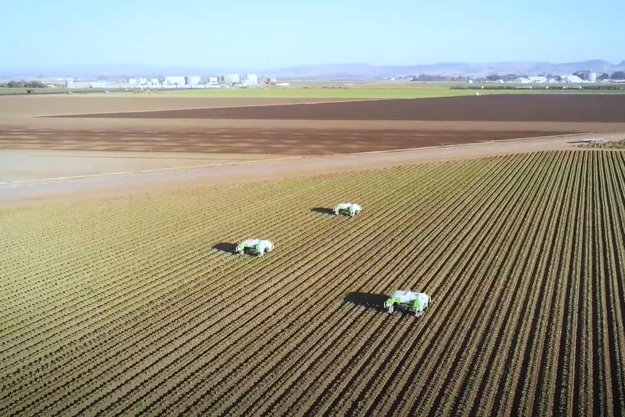 [Vidéos] Cinq robots vus au Fira 2020 pour désherber sans produits chimiques