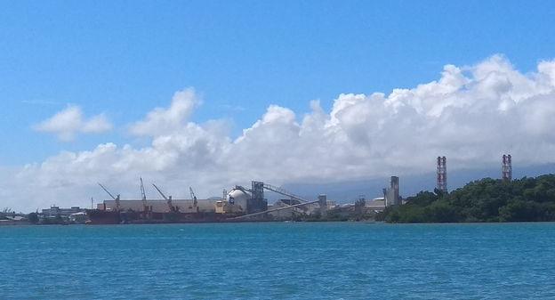 Albioma investit en Guadeloupe pour remplacer le charbon par de la biomasse