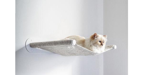 [L'industrie c'est fou] La chatte de Karl Lagerfeld, Choupette, fait son retour aux affaires