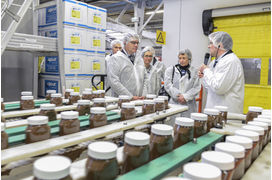 Comment Ferrero fabrique son Nutella