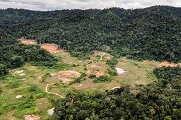 Nouveau camouflet pour l'Etat concernant le projet minier Montagne d'or en Guyane