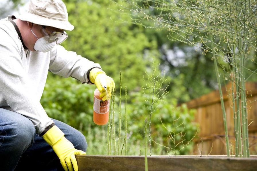 Dans le top 10 des départements consommateurs de pesticides — Loire-Atlantique