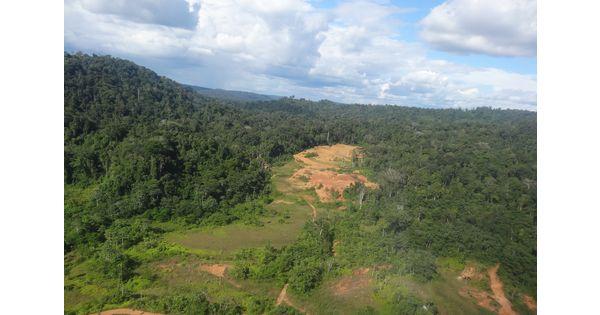 Cafouillage à Cayenne sur les concessions de Montagne d'Or