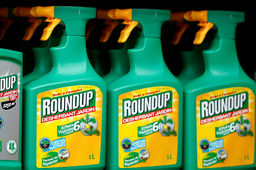 "[Glyphosate] Le Roundup de Bayer, ""facteur significatif"" d'un cancer selon des jurés californiens"