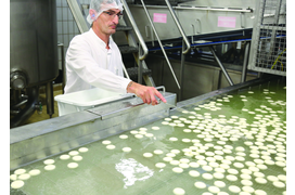 Les fromages made in Mayenne