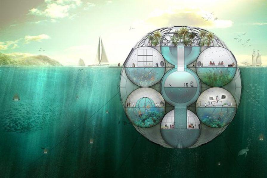 une bulle de plancton contre le r chauffement climatique technos et innovations. Black Bedroom Furniture Sets. Home Design Ideas