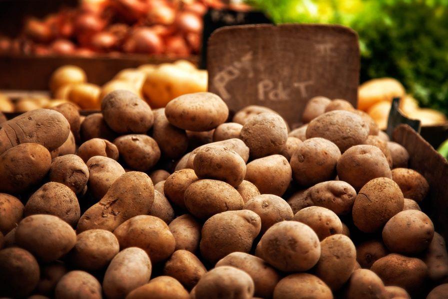 Les producteurs de pommes de terre prennent de l'assurance