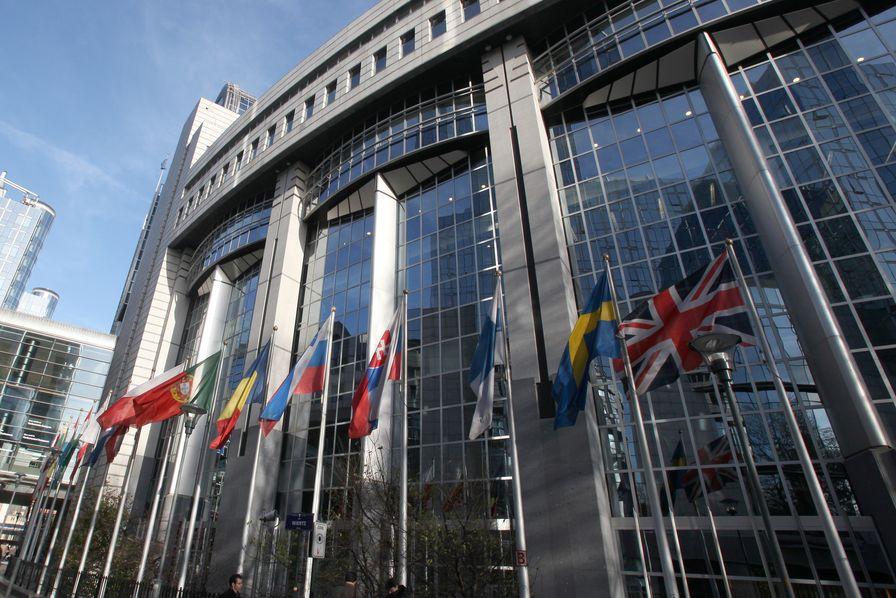 A Bruxelles comme en France, le dossier Fipronil soulève des dissensions