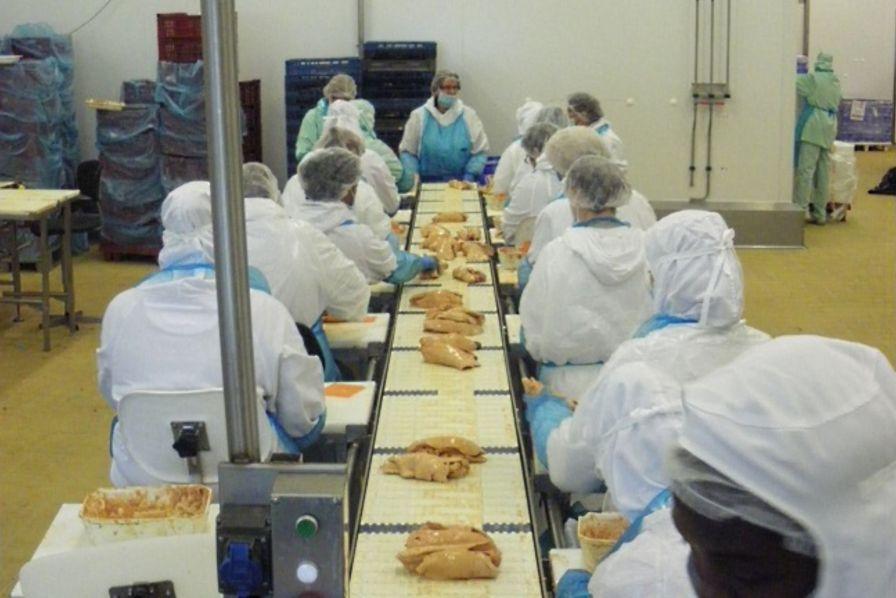 Les 40 usines de l 39 ann e la plus grande usine de foie gras au monde est mont de marsan - Usine de meuble au portugal ...