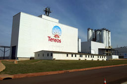 Tereos quintuple sa production d'amidon au Brésil