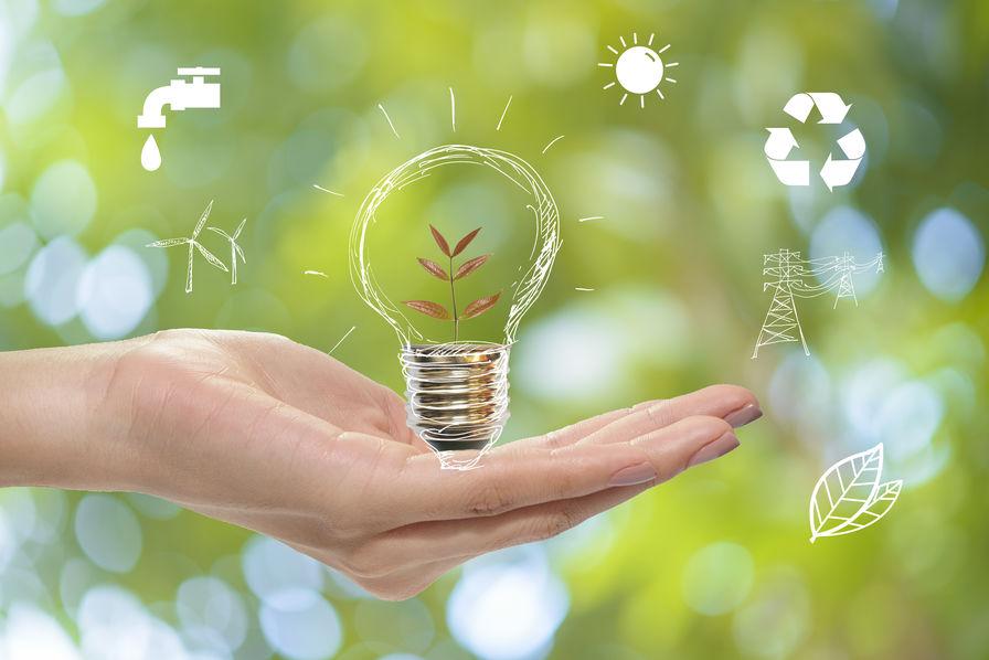 Pour un nouveau parti écologique ou vert