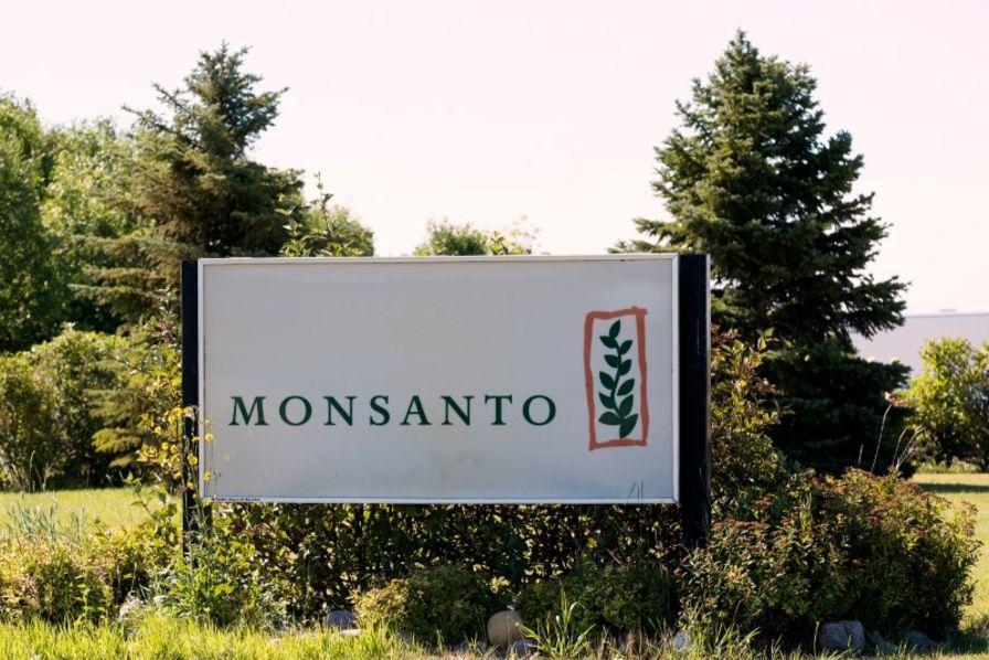 Vers l'ouverture de centaines de procès contre Monsanto outre-Atlantique